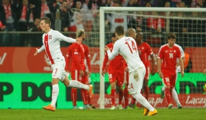 Poland - Switzerland, 18.11.2014